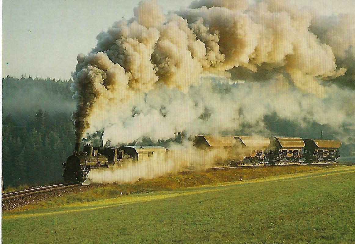 Waldviertler Schmalspurbahnen, Lok 399.04. (5308)