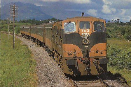 Córas Iompair Éireann (CIE), dieselelektrische Lokomotive 163 bei Killarney / Kerry im Mai 1980. (10463)
