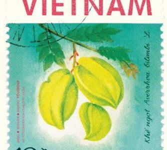Mido / Hando: Vietnam